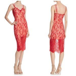 NWT Keepsake Love Affair Lace Midi Dress